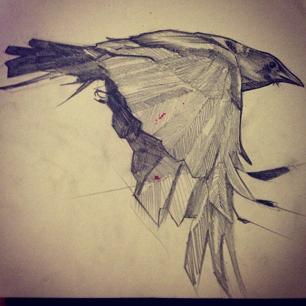 Drawn raven love Journal  love drawing of