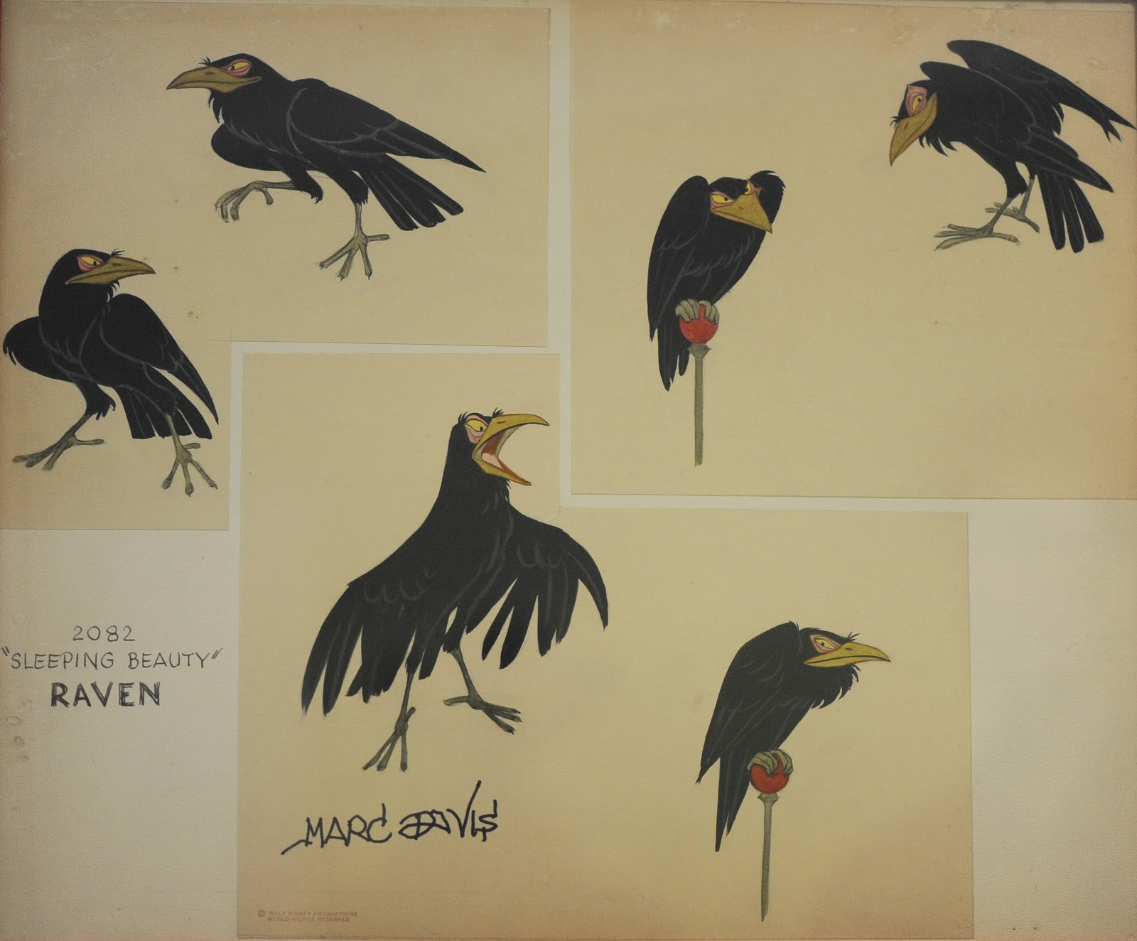 Drawn raven maleficent About Crows Ravens – in