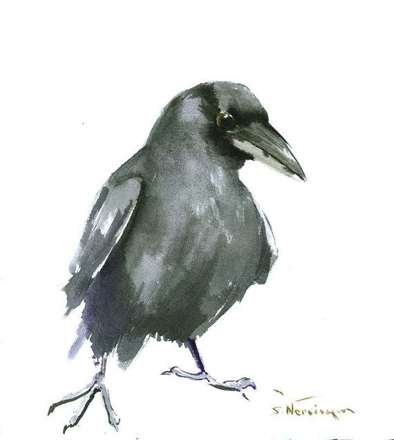 Drawn raven minimalist Art X 10 in watercolor