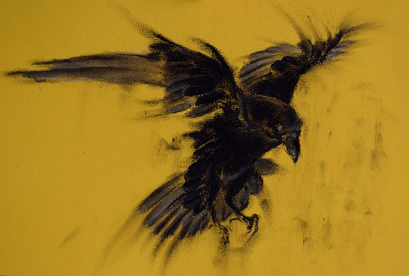 Drawn raven minimalist Crow 12x8 Art Charcoal Raven