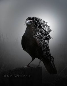 Drawn raven moon By Worisch Moon Drops art