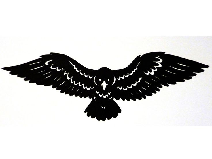Drawn raven open wing Spread tattoo Pinterest wings spread