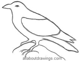 Drawn raven pencil drawing Magical Raven Outline Ravens of