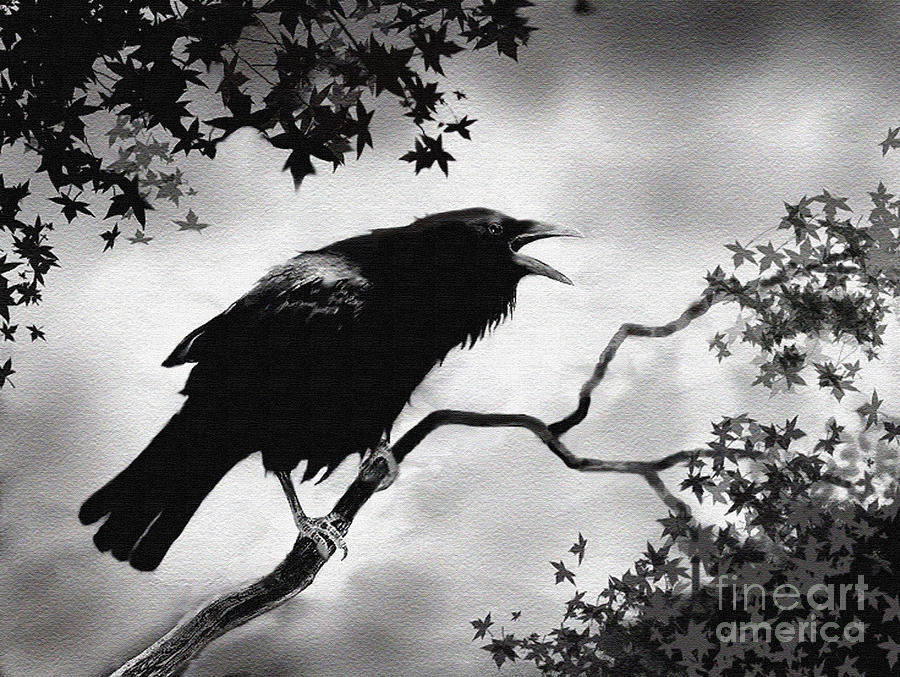 Drawn raven perched Painting Foster Song Crow Painting