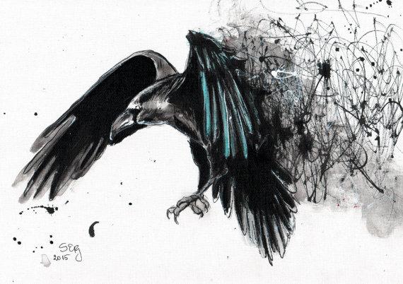 Drawn raven raven landing Raven Ink landing on black