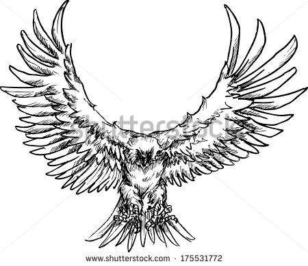 Drawn raven raven landing Raven drawing photo#3 Landing landing