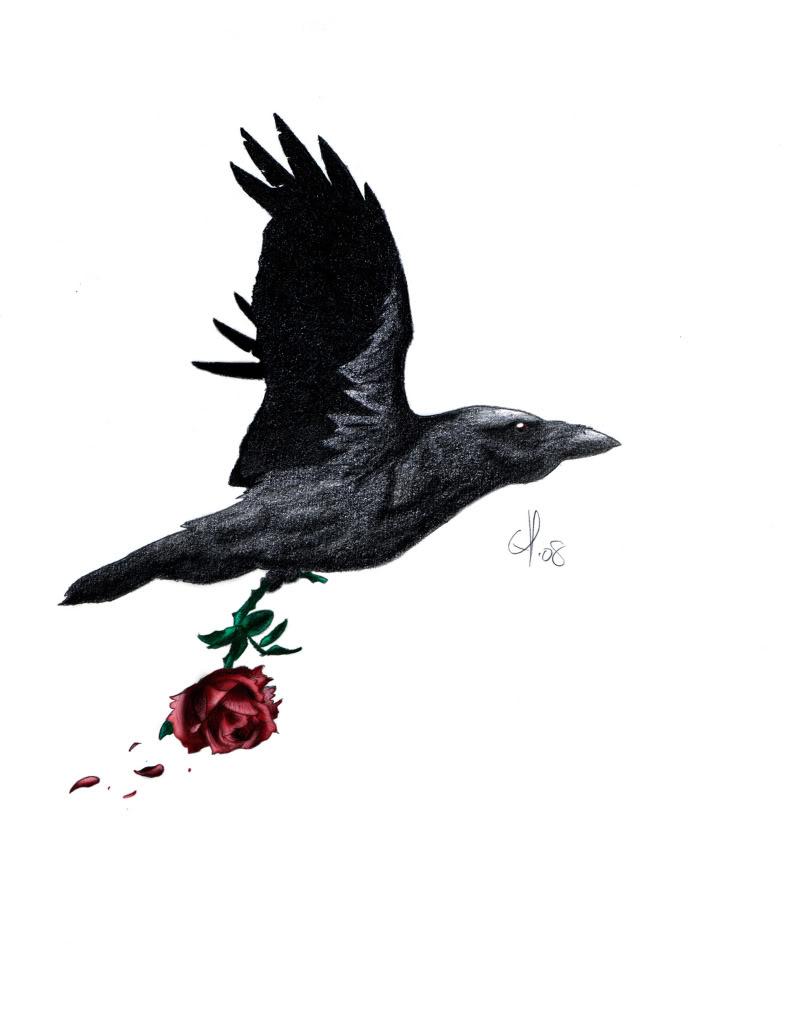 Drawn raven rose Ravens jpg rose raven photo: