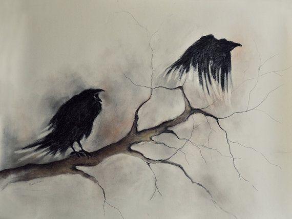 Drawn raven shadow Drawings 26x20