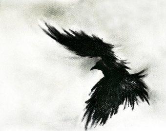 Drawn raven shadow  flying 26x20