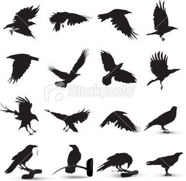 Drawn raven silhouette Ideas Best tattoo Silhouette Royalty