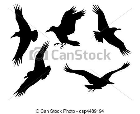 Drawn raven silhouette And isolated Art Raven raven