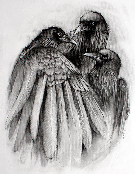 Drawn raven sketch Child by The+Gathering++8x10+Crow+Raven+Black+and+by Moment Print