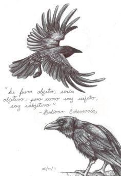 Drawn raven sketch Pavlovich the Crow  Once