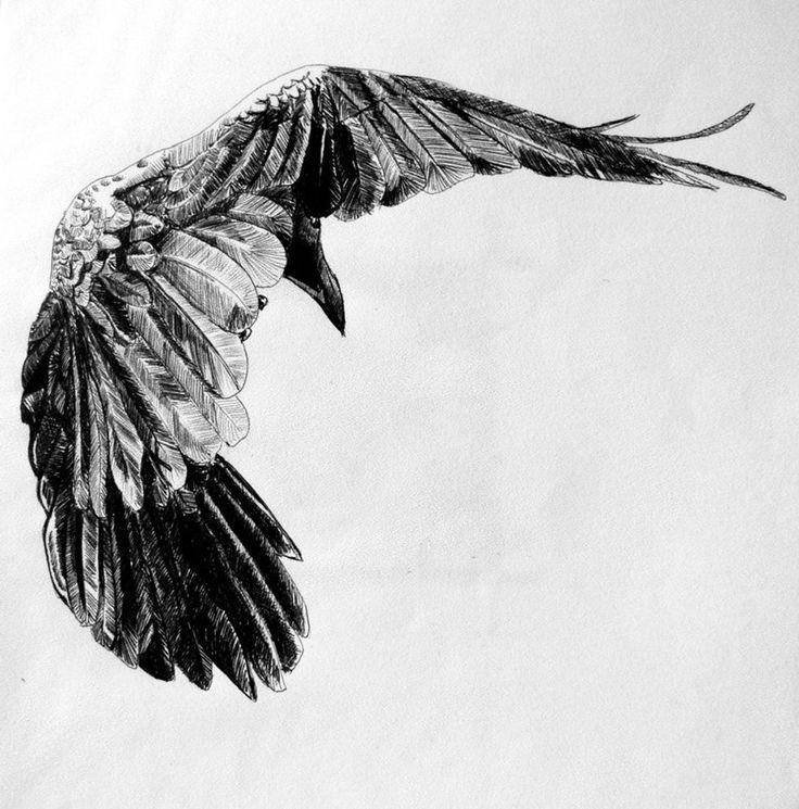 Drawn raven sketch Drawing  Raven Pics >