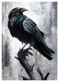 Drawn raven smoke Wanna Ravens Wallpaper I bird