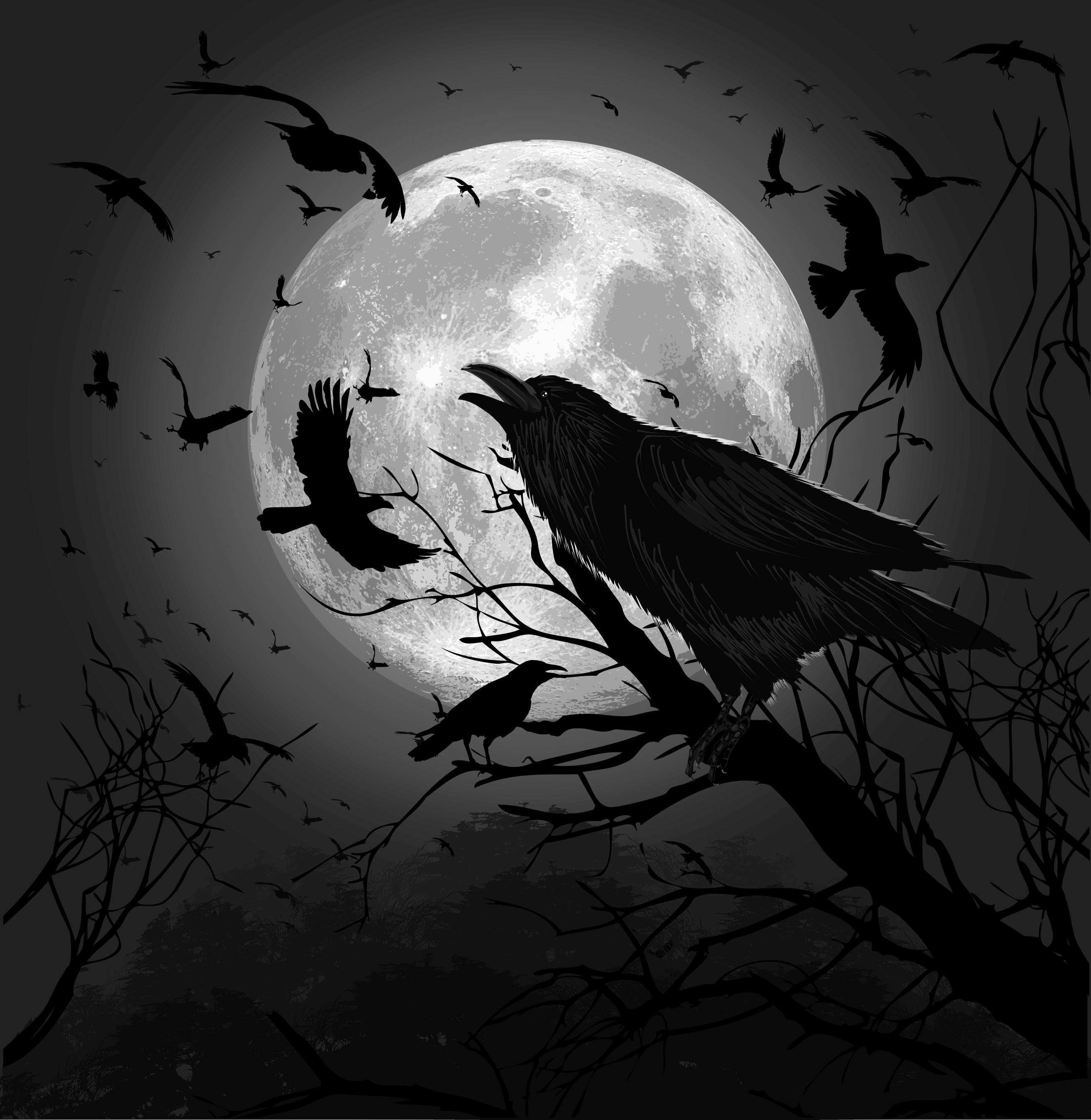 Drawn raven spooky Wallpaper Raven WallpaperSafari The Mocker