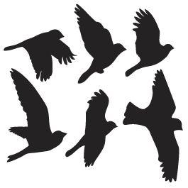 Drawn raven stencil Appliques Best Bird Dezign stencil