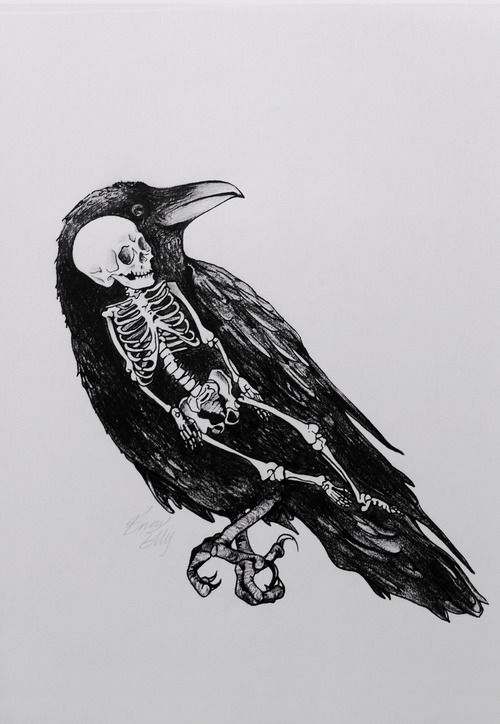 Drawn raven tree The #TobyFletcher best Raven Fly