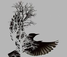 Drawn raven tree Pinterest 30 Want!!! on images