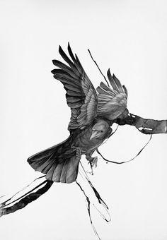 Drawn raven two headed Pinterest Di headed raven