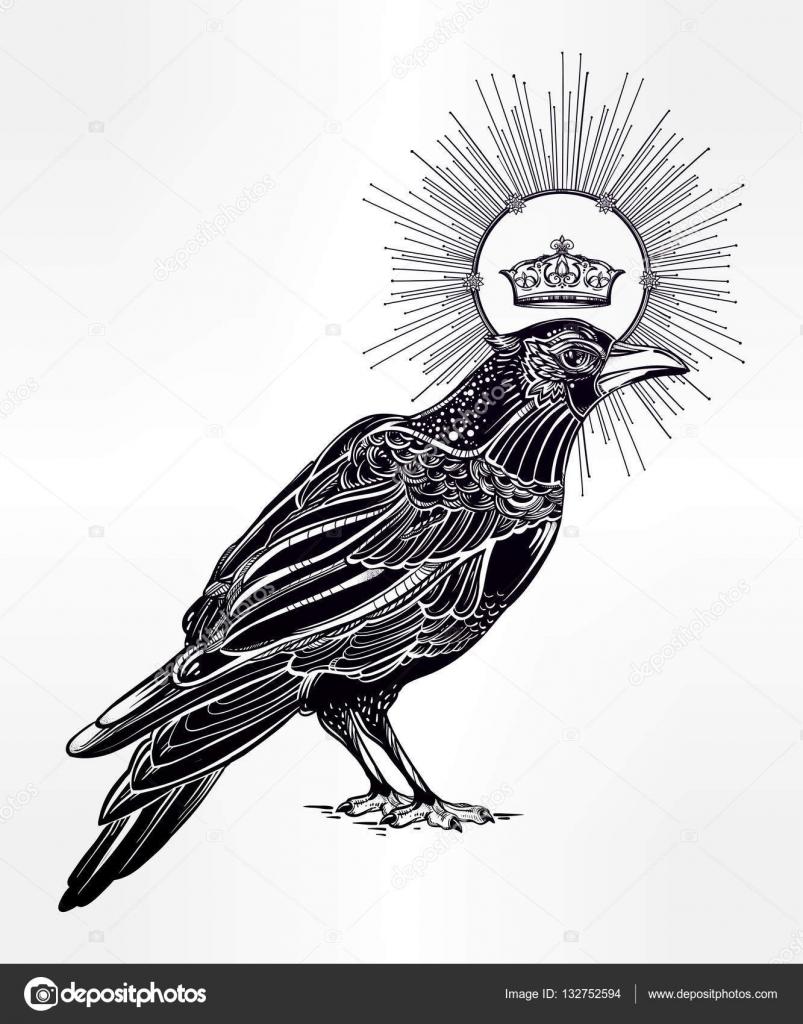 Drawn raven vector Crown with drawn Tattoo drawn