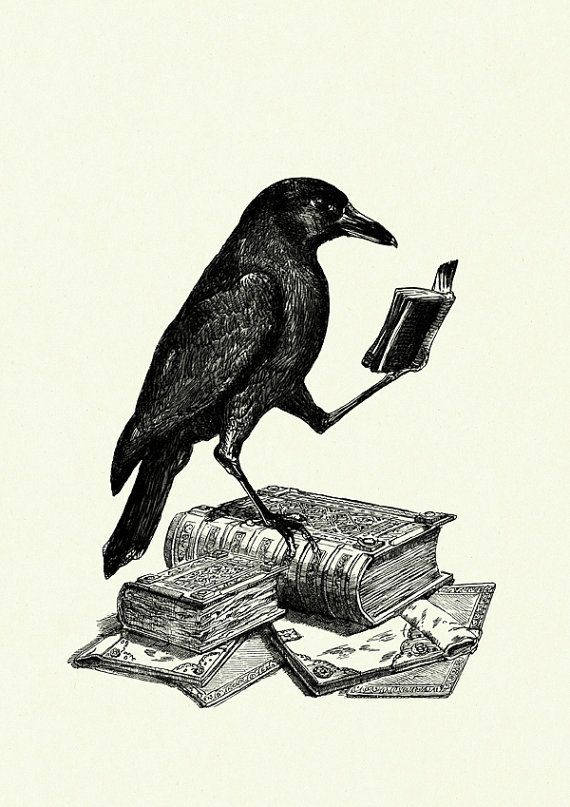 Drawn raven victorian Halloween tattoo Raven Allan a