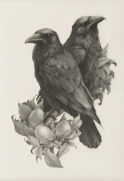 Drawn raven victorian Beautiful Vanessa of Foley Best