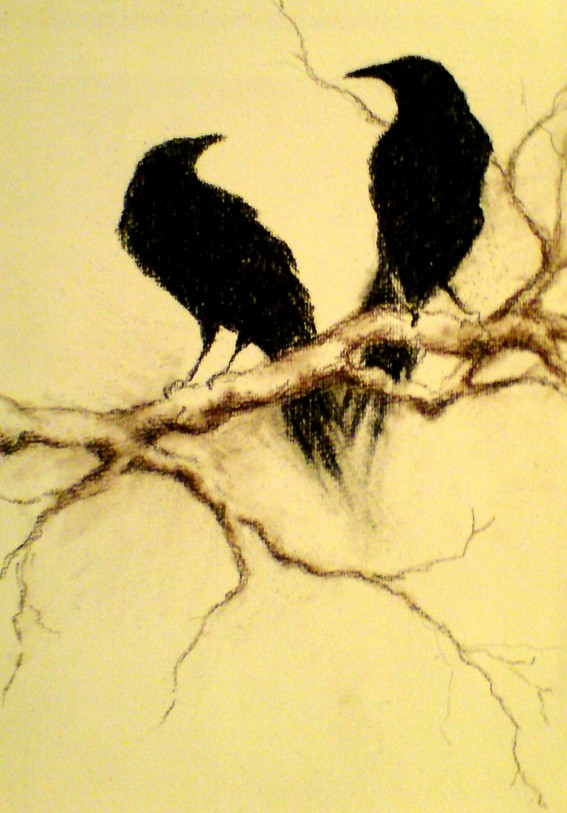 Drawn raven wicked Ravens By Crows Crows Charcoal