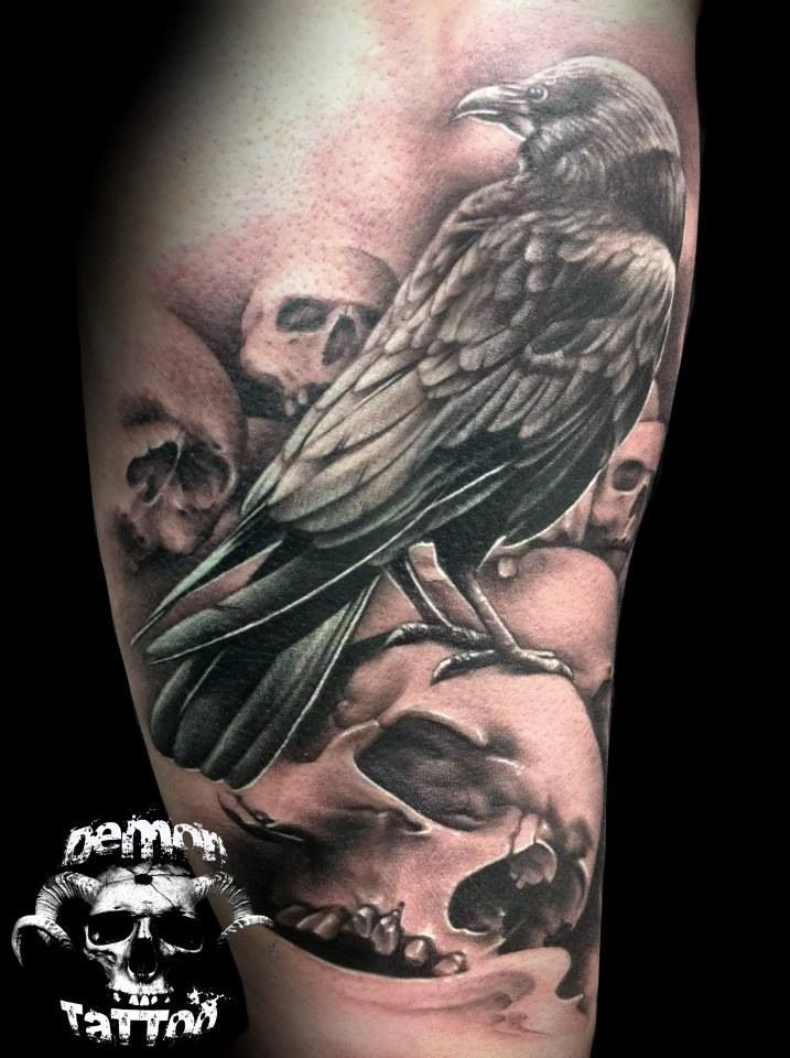 Drawn raven wicked 2254 on raven Skulls and