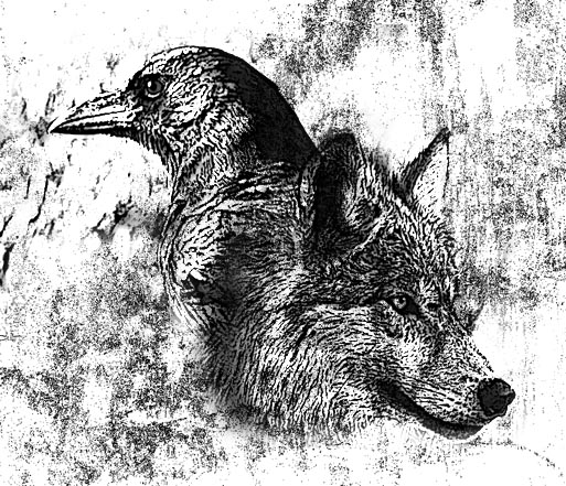 Drawn raven wolf Wolf the the Arkham