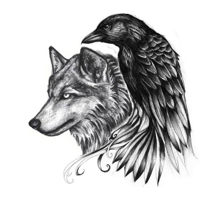 Drawn raven wolf On Pinterest images art images