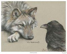 Drawn raven wolf Art Bearcroft Raven Vic must