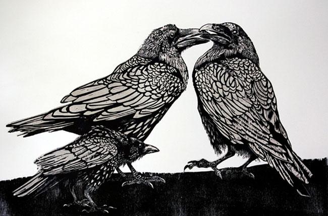 Drawn raven woodcut Crow Disturbs Ravens the Page