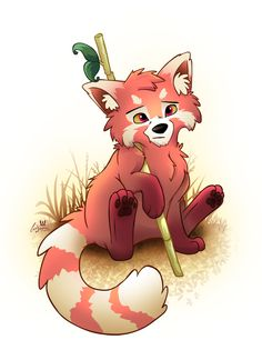 Drawn red panda Red Search drawing to panda