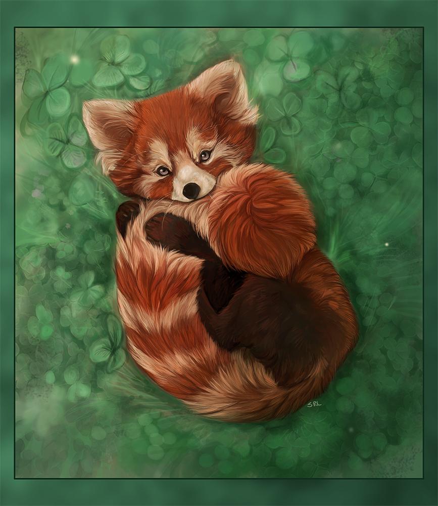 Drawn red panda adorable baby More Red pandas  Cute