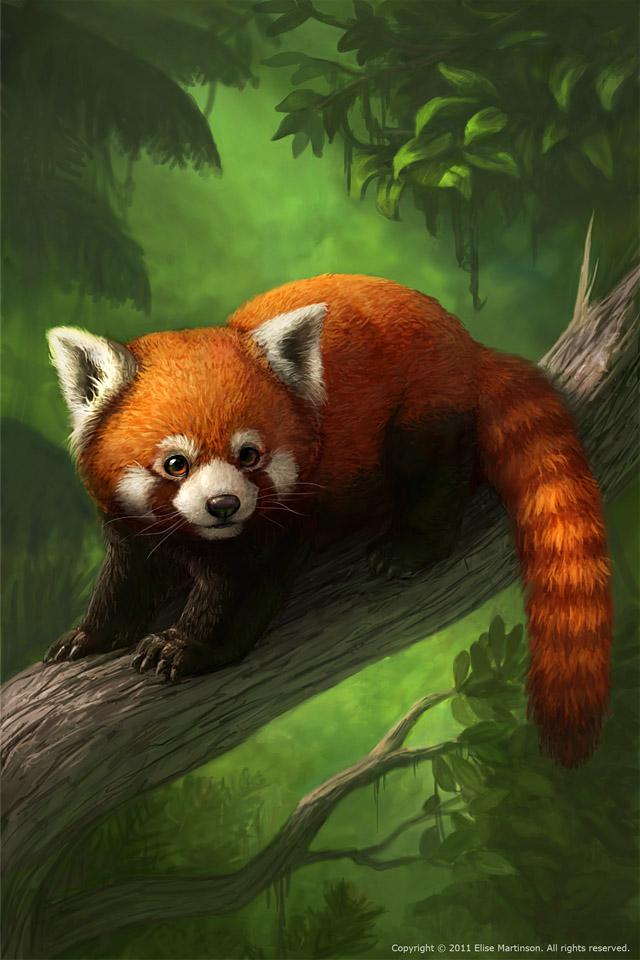 Drawn red panda fursona Topic Corner (I The ♧