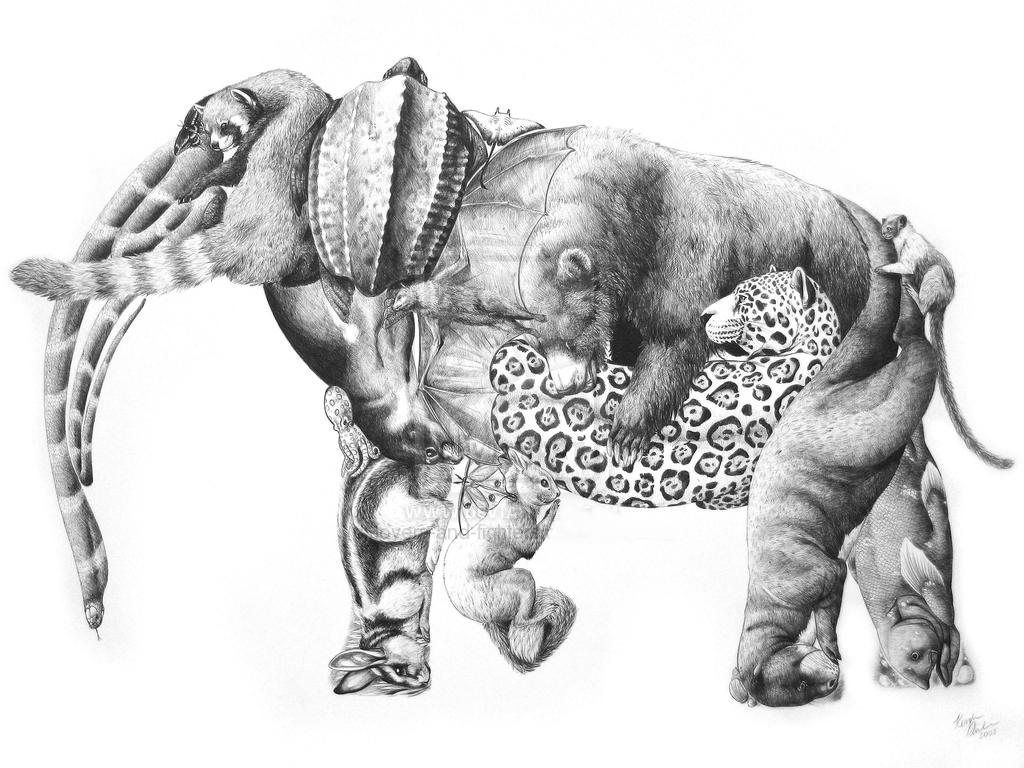 "Drawn red panda indian fox Lovers drawing jhené ""Save efuru"