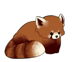 Drawn red panda japanese Sorta Pinterest Chibi Panda on