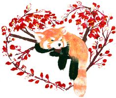 Drawn red panda japanese Want  to Red and