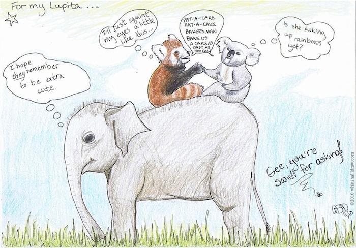 Drawn red panda koala Playing response My bear panda