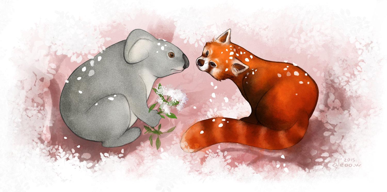 Drawn red panda koala  Whiter Panda Red Aleoo