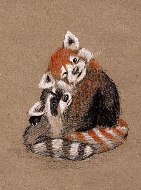 Drawn red panda sad animal Panda and panda This Best