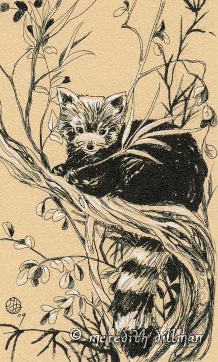 Drawn red panda sad animal On by 194 on *MeredithDillman