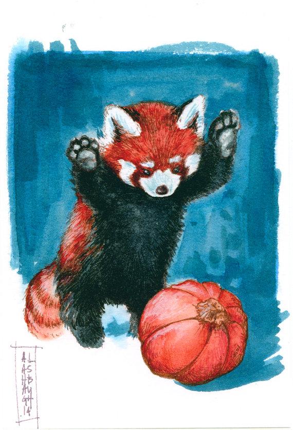 Drawn red panda small Since Panda by Panda' with