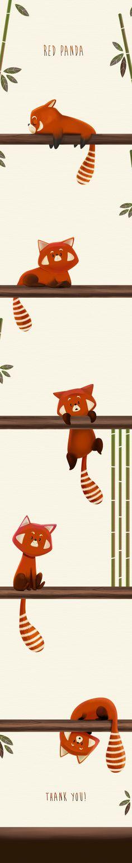 Drawn red panda tailed Https://www · Panda behance Panda
