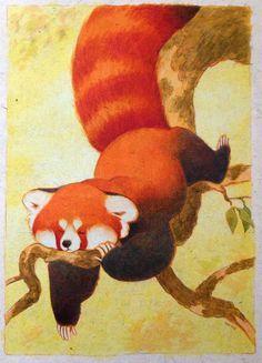 Drawn red panda tailed Red gourd Art Panda king