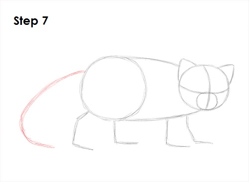 Drawn red panda tailed Draw 7 a Red How