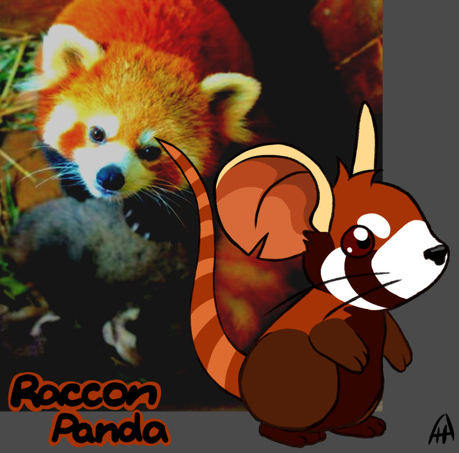 Drawn red panda transformice  by KonataIdzumi Raccon Draw