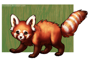 Drawn red panda transparent Red by DeviantArt Mootdam by
