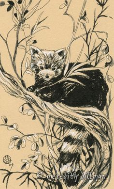 Drawn red panda tree  (430×711) Red i position